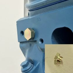 LSx Cylinder Head Coolant Plug